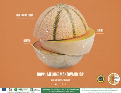 100% MELONE MANTOVANO IGP