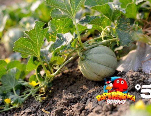 Il Melone a Paperissima Sprint